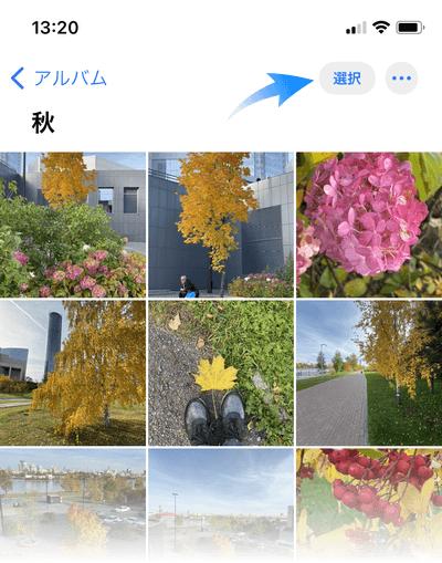 iPhoneのアルバムで写真を選択