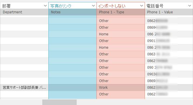 手動的に設定したフィールド名(青)とインポートしないフィールド(赤)