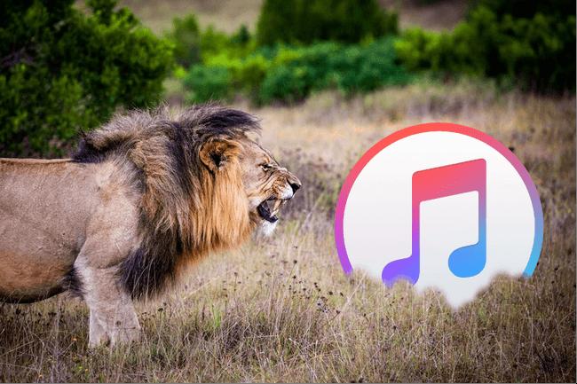 iTunesの7つの不便な点