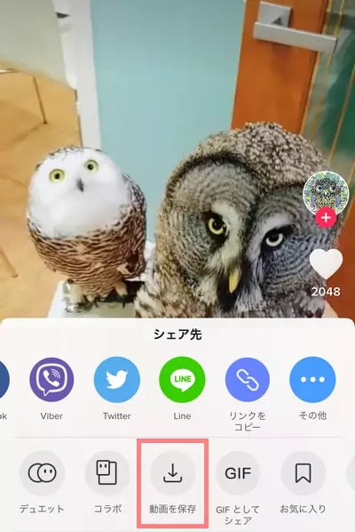 TikTok動画をカメラロールに保存